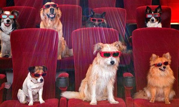 ¡Qué padre! Cinemex es 'Pet Friendly', ¡aceptará mascotas en sus salas! (FOTO)